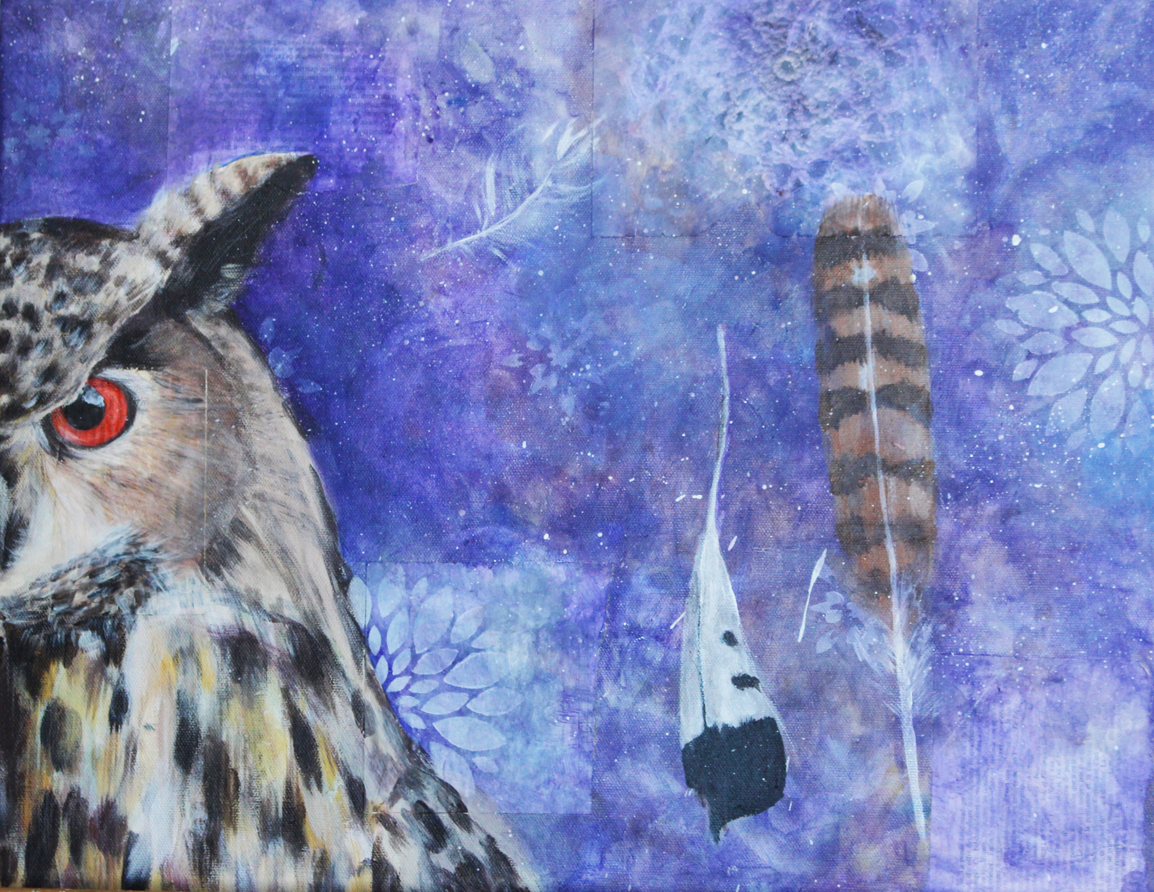 Owl / Hibou
